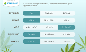 indica marijuana strains for cannabis shops